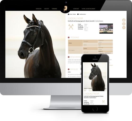 Gestüt Bonhomme mit neuer Online-Präsenz