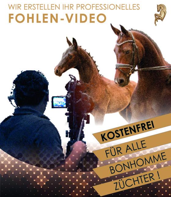 Züchterservice: Video-Termin in der Lüneburger Heide