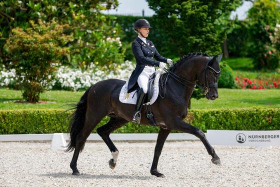 CDI4* Kronberg: Silber für D'Egalité in NÜRNBERGER BURGPOKAL Qualifikation